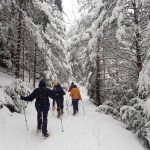 raquetas-de-nieve-pirineos-huesca-edgar-sanchez-galeria-h1